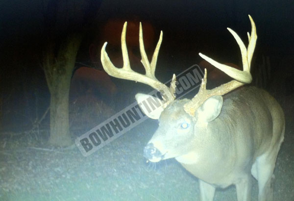 Brady Scheffler buck trail cam photo