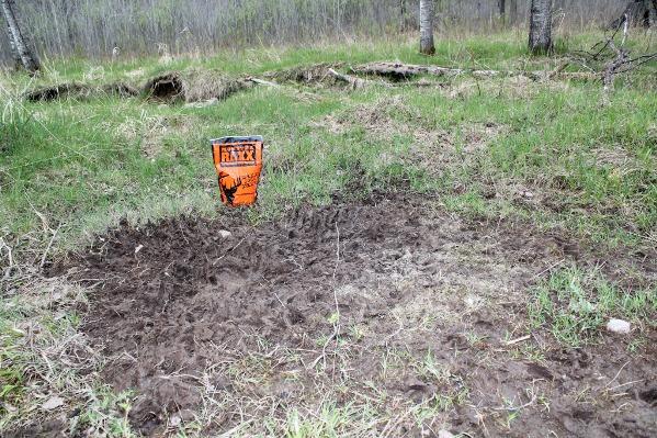 raxx maxx near site