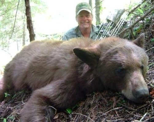ted nugent behind bear