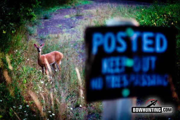 no trespassing sign with deer