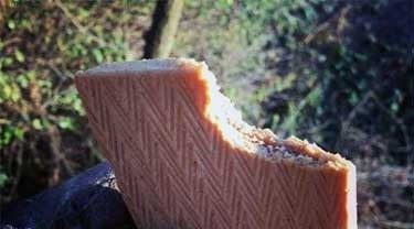 10 Best Treestand Snacks