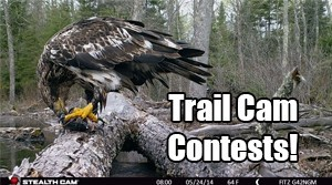 Enter Our Monthly Trail Camera Contest!